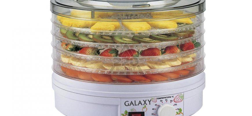 Сушилка для фруктов и овощей: советы по выбору устройства