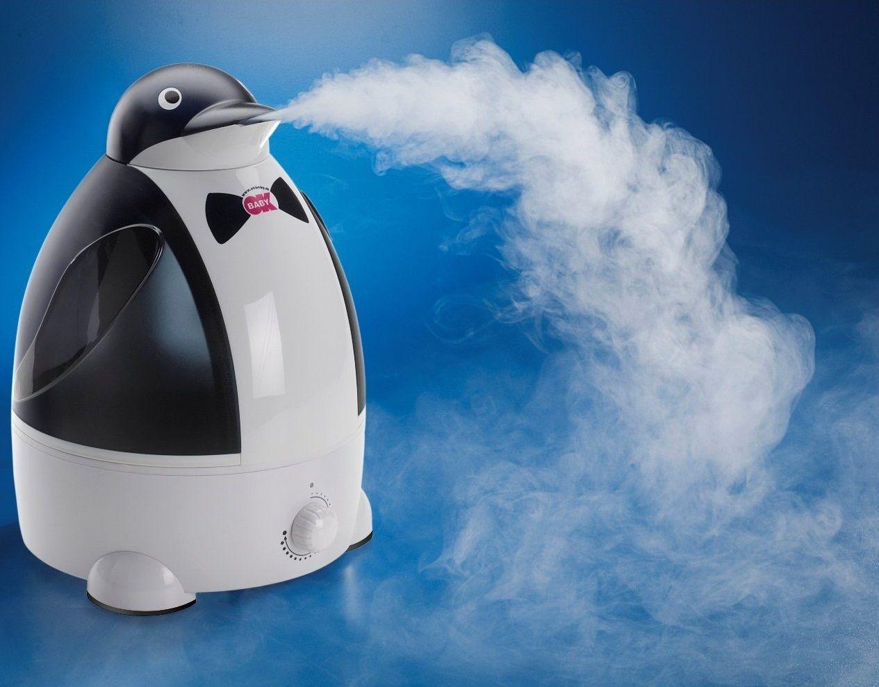 Увлажнитель воздуха с ионизатором: какой выбрать