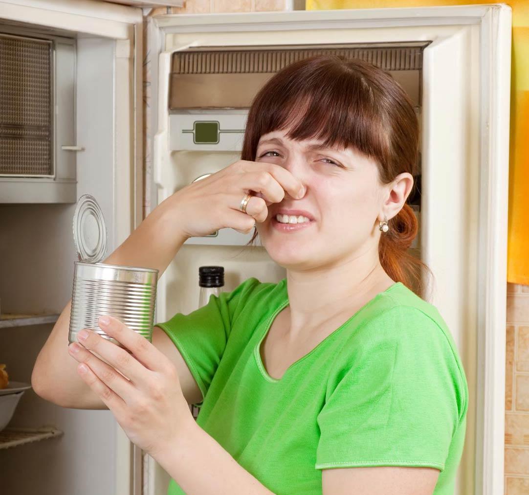 Что делать, если в холодильнике появилась плесень