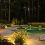 Подсветка растений и водоёма