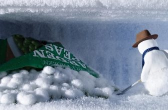 Снеговик в холодильнике