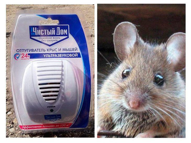 Ультразвуковой отпугиватель мышей и крыс